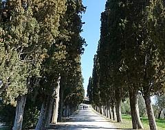 Castello di Casole