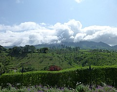 Sri Lanka June 2014