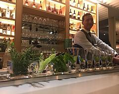 Bar at Hotel Camiral